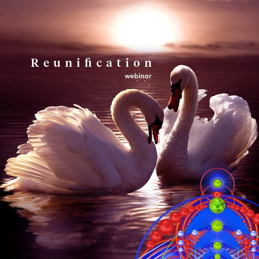 """Live Webinar """"Reunification"""""""